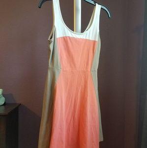 Express cotton skater dress